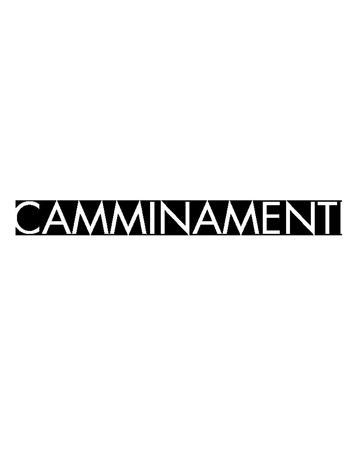 CAMMINAMENTI