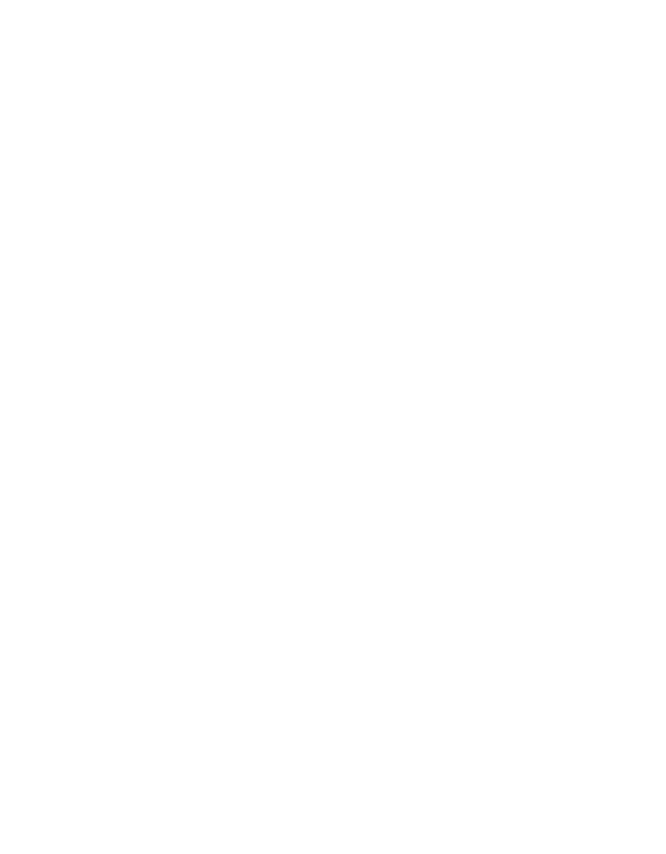 traditionelle